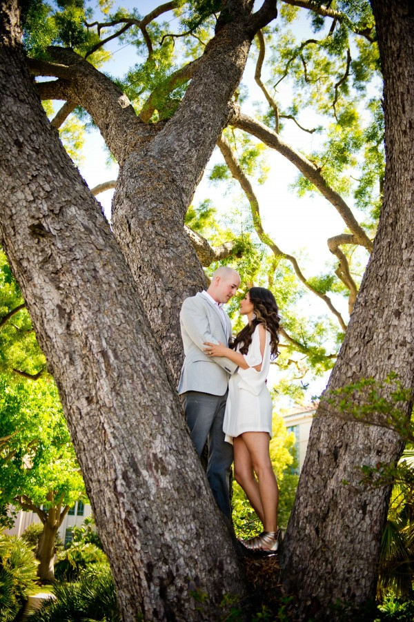 Top Wedding Photography engagement shoot standing in a tree in San Diego