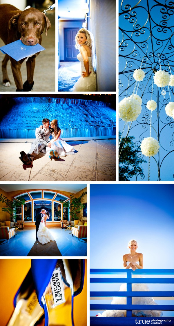 San Diego Wedding Photography: Blue wedding color, blue details, florals, dog ring bearer, blue lighting, blue wedding shoes