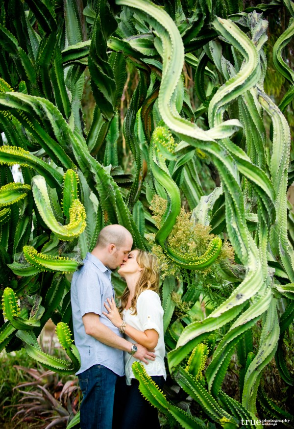 San Diego Wedding Photography: Engagement Photo Shoot in the cactus garden at Balboa Park in San Diego