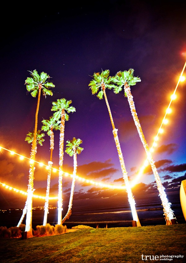 Outloor twinkles lights wrapped around palm trees at outdoor wedding