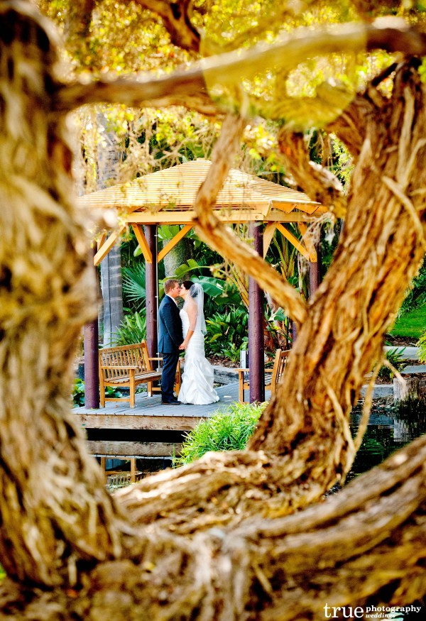 Paradise Point Wedding with Ever After Events