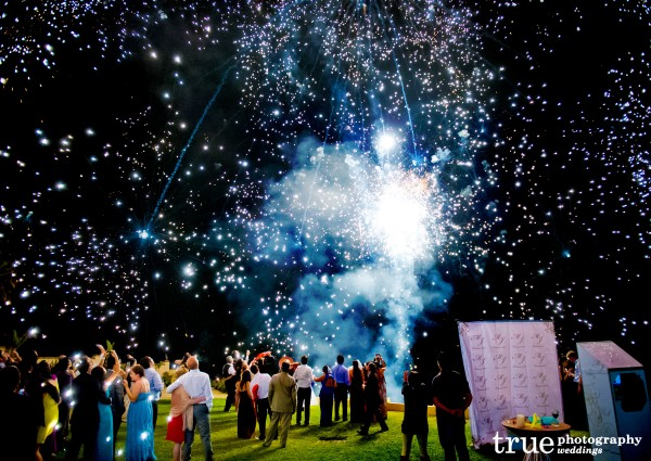 Favorite-Photo-of-the-Week-Wedding-Fireworks-