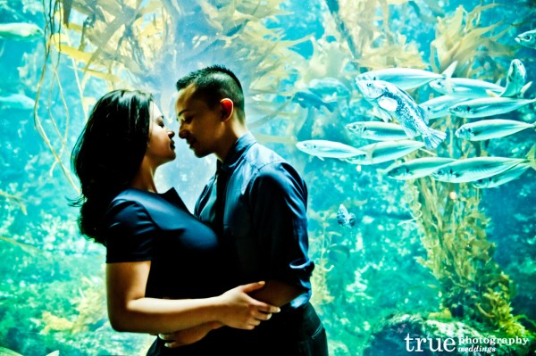 _Birch-Aquarium-Engagement-Photo-Shoot-
