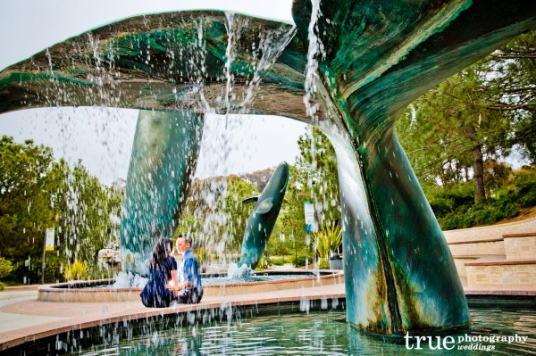 Birch-Aquarium-Engagement-Photo-Shoot
