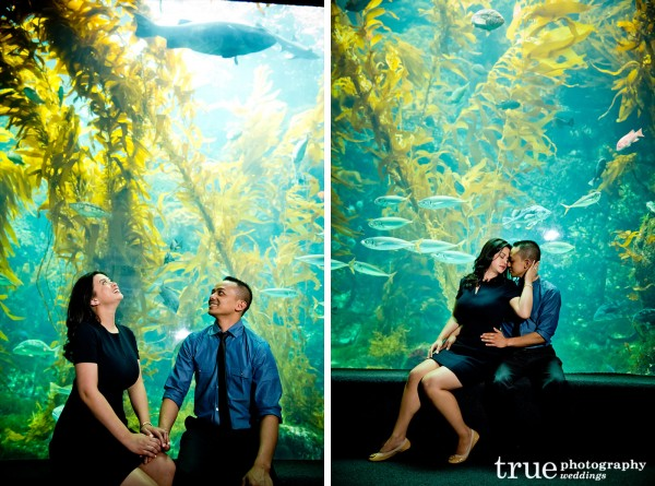 Engagement-Photo-Shoot-at-Birch-Aquarium--