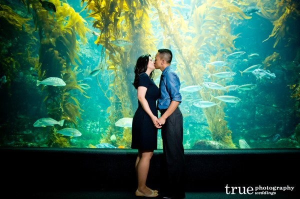 Engagement-Photo-Shoot-at-Birch-Aquarium