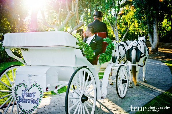 storybook-carriage-kiss