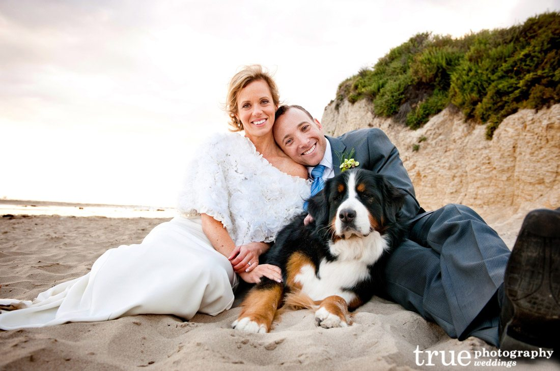 Beach-wedding-with-a-dog