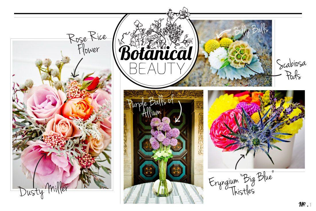 Botanical-Blog_1