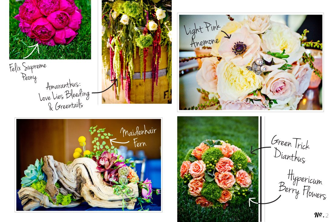 Botanical-Blog_2