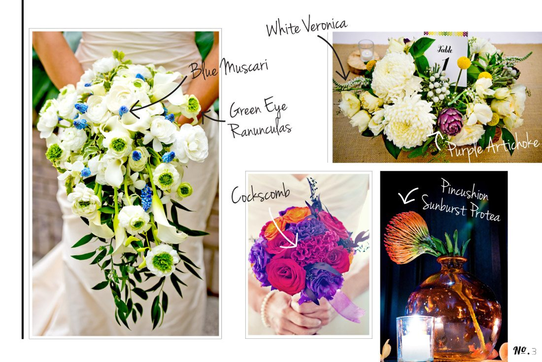 Botanical-Blog_3