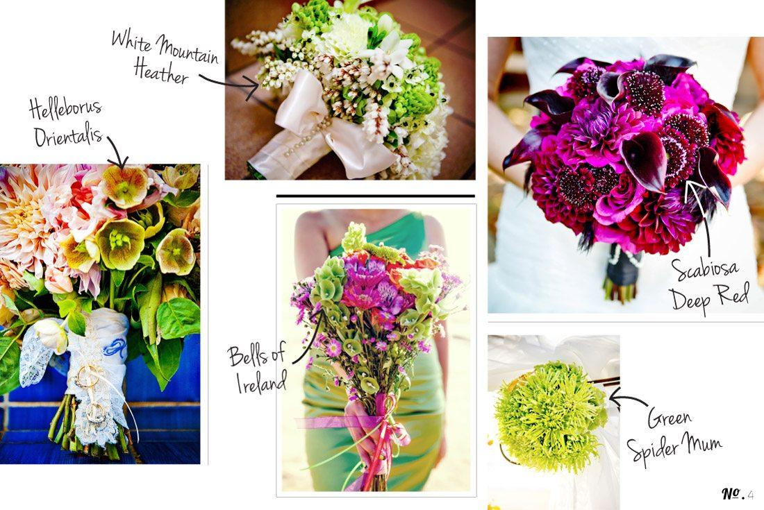Botanical-Blog_4