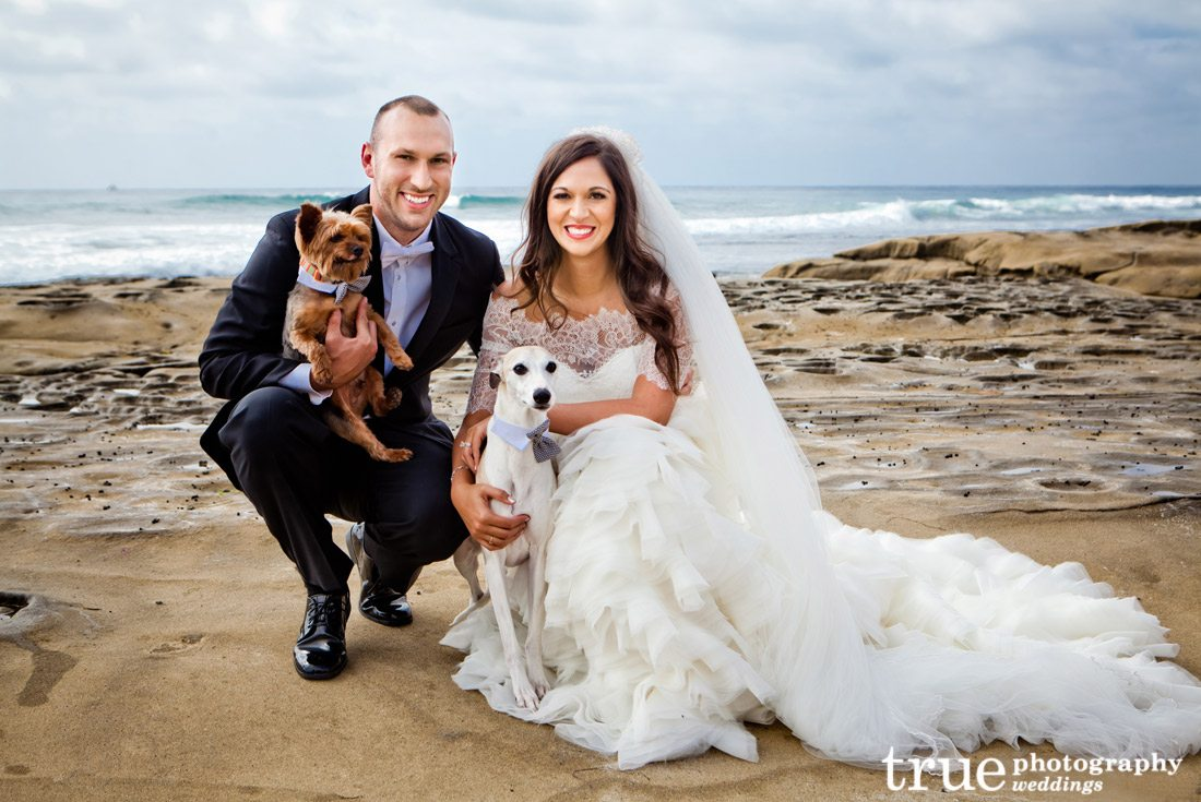 Bride-and-groom-with-dogs-at-wedding-
