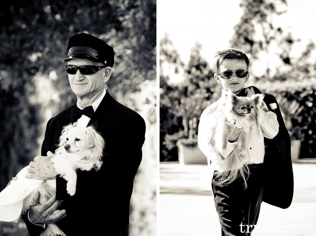 Men-holding-dogs-at-weddings