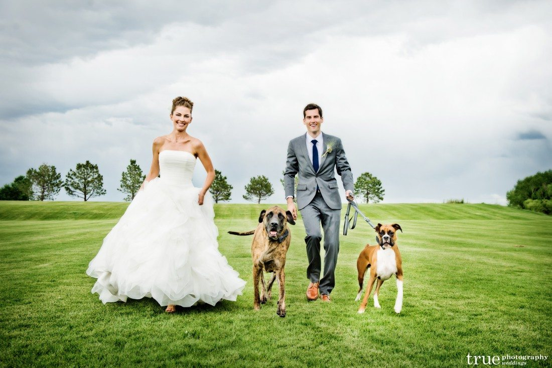 Our wedding couple Sandra and Craig with their dogs