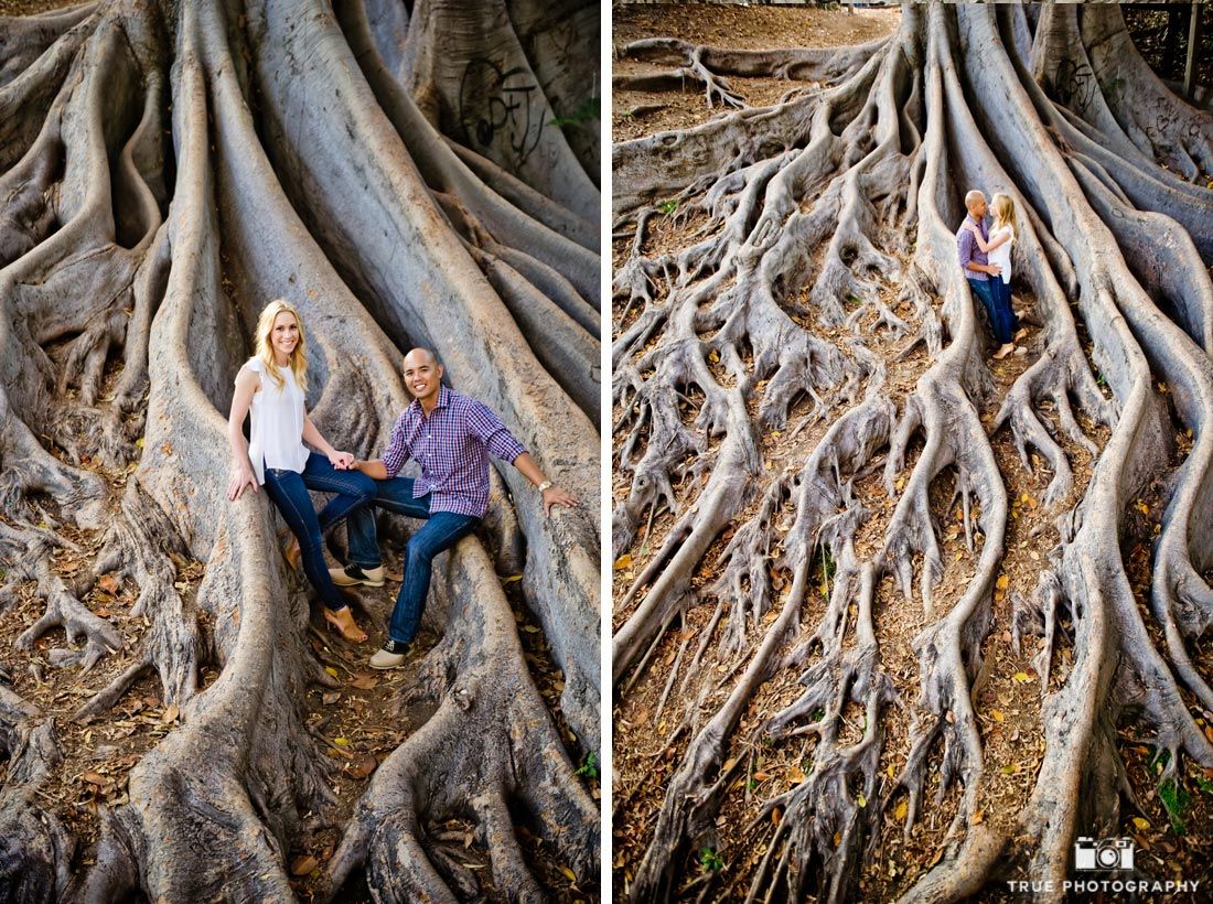 gnarly tree portraits