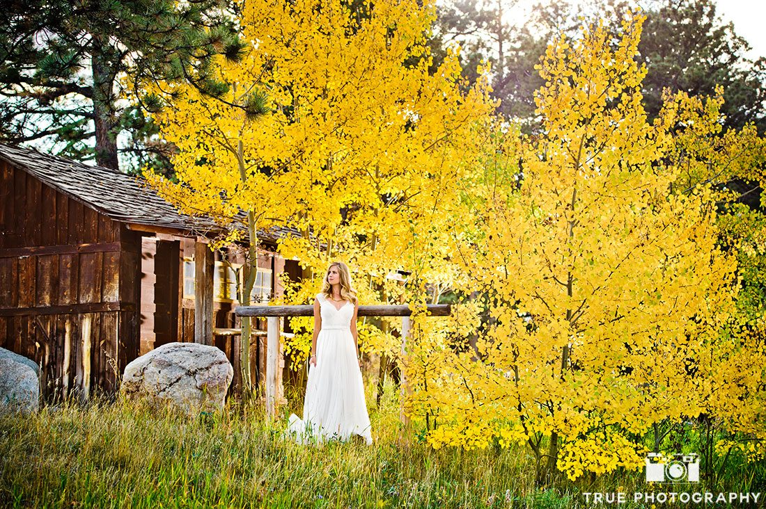 tree and bridal gown at wild basin lodge