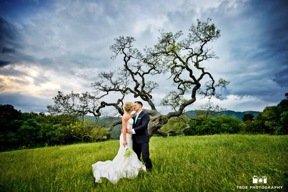 Bride and Groom kissing in front of Unique Tree