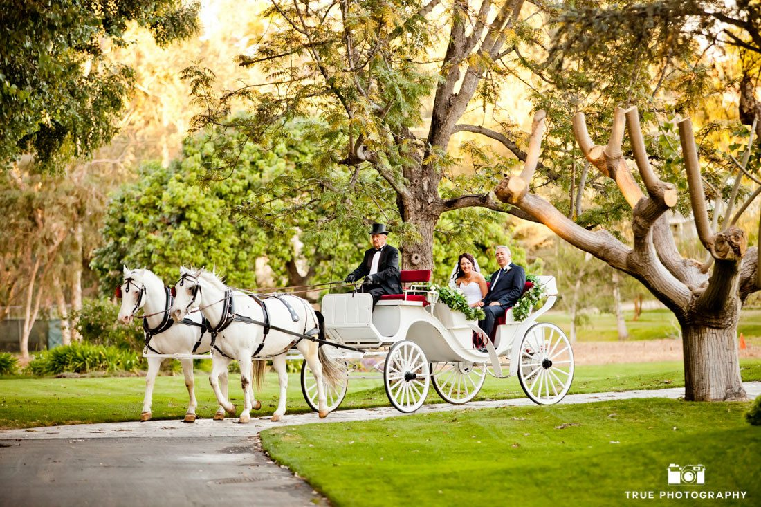 Couple arrives in Horse Drawn Carriage
