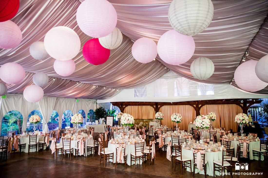 Market Lighting at Wedding Reception