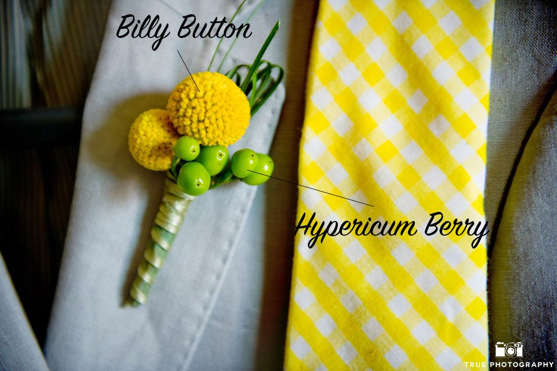 Billy Button Boutonniere