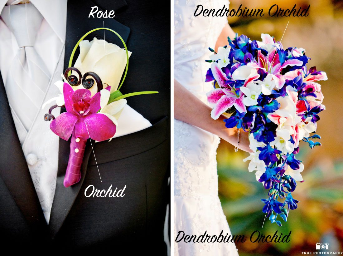 Colorful orchid bouquet