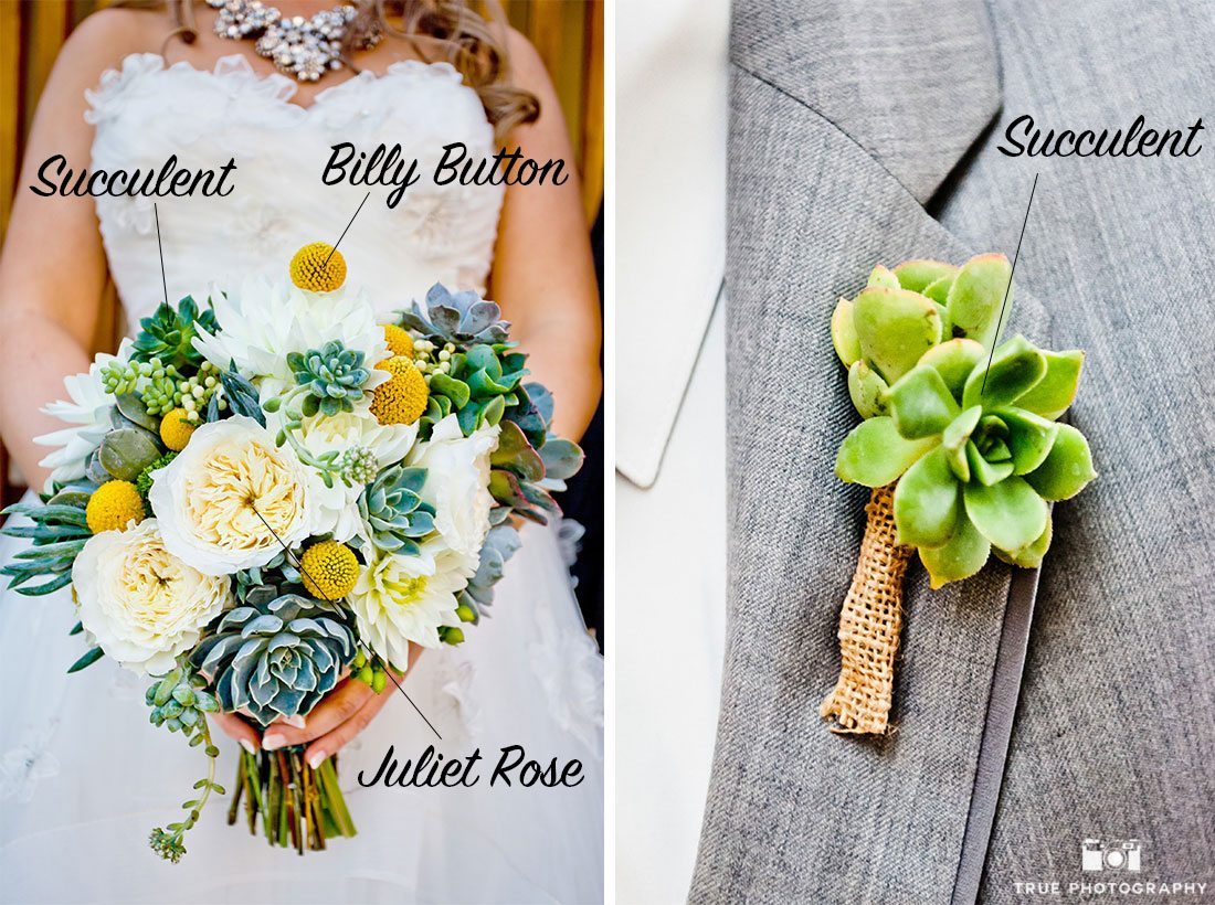 Colorful desert themed wedding succulents