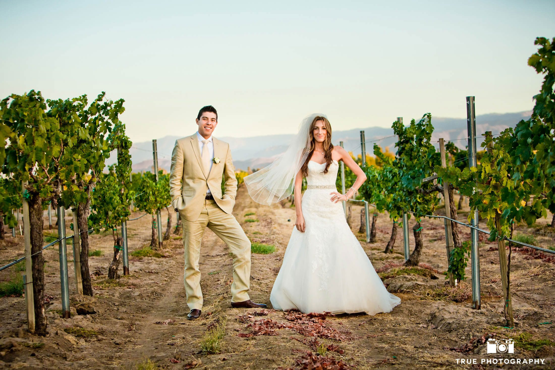 Couple stand in middle of vineyard