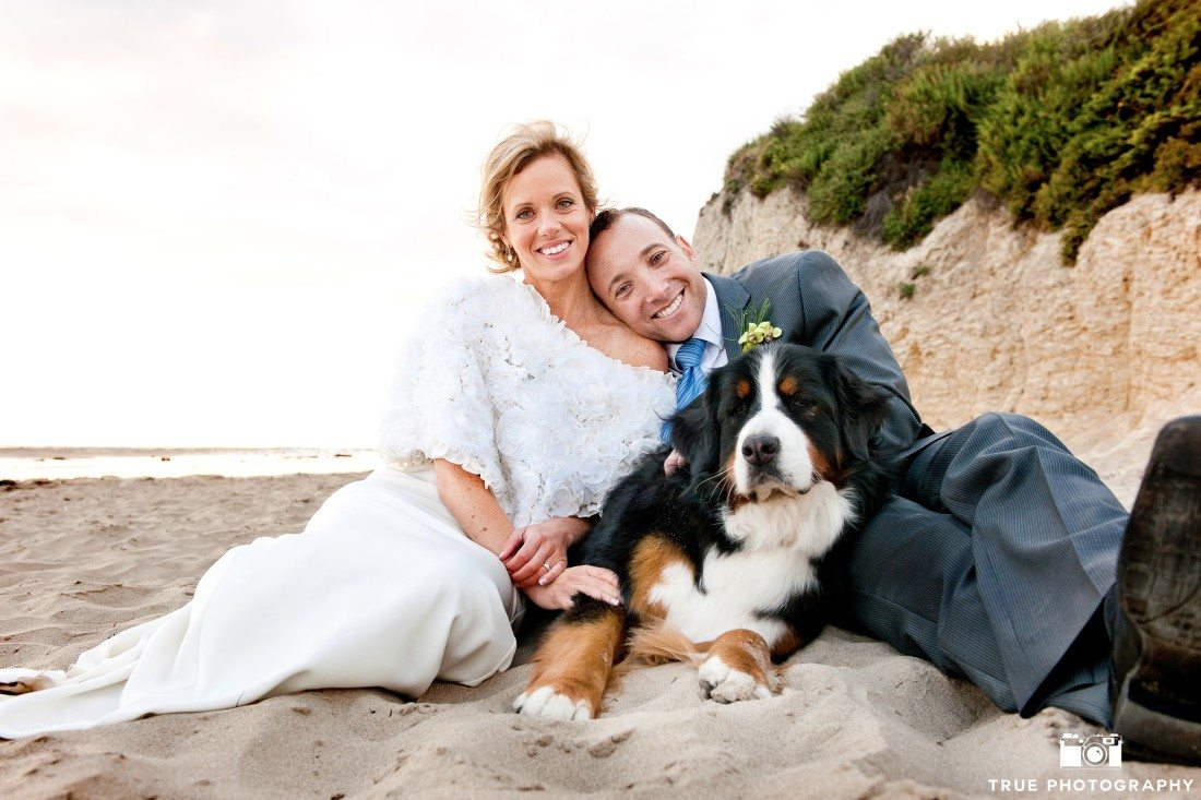 Bride and groom with Burnese Mountain Dog