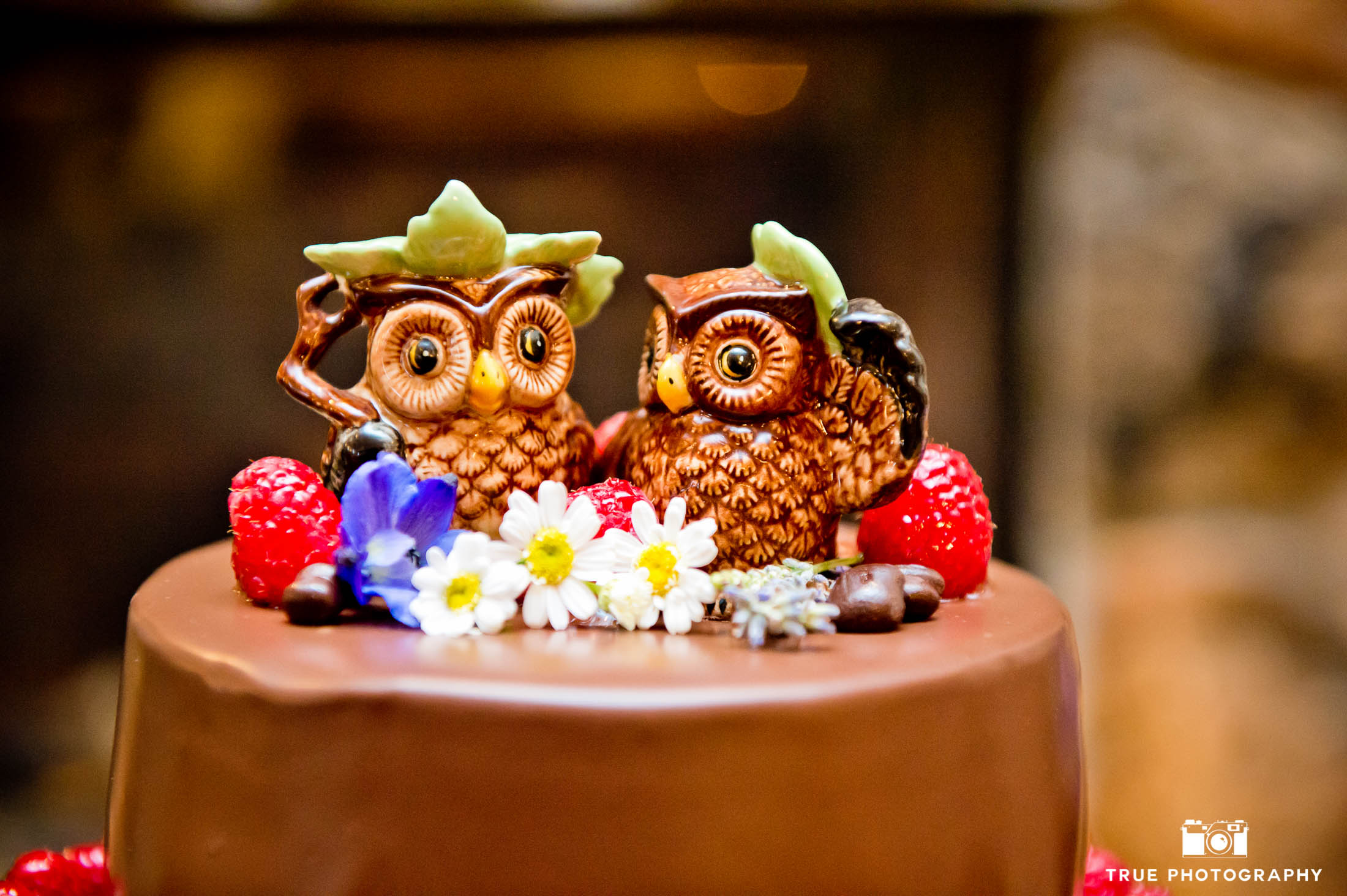 Cute, ceramic owl wedding cake topper of wedding couple