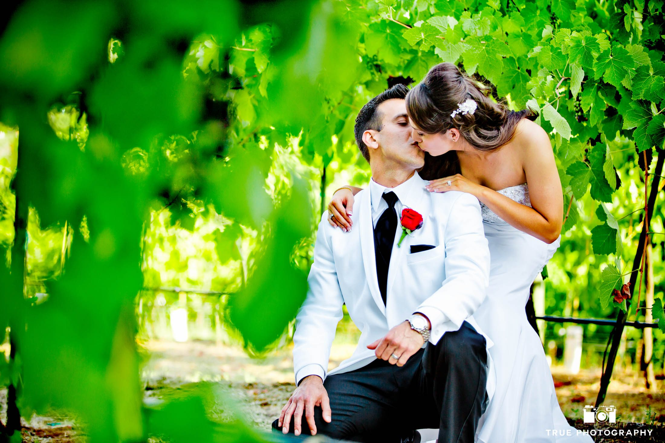 Couple Kissing between leaves in vineyard