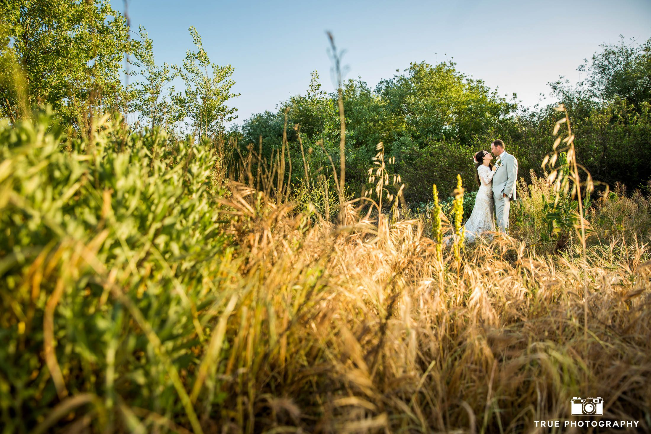 Bride and Groom wedding portraits standing in grassy field with natural light