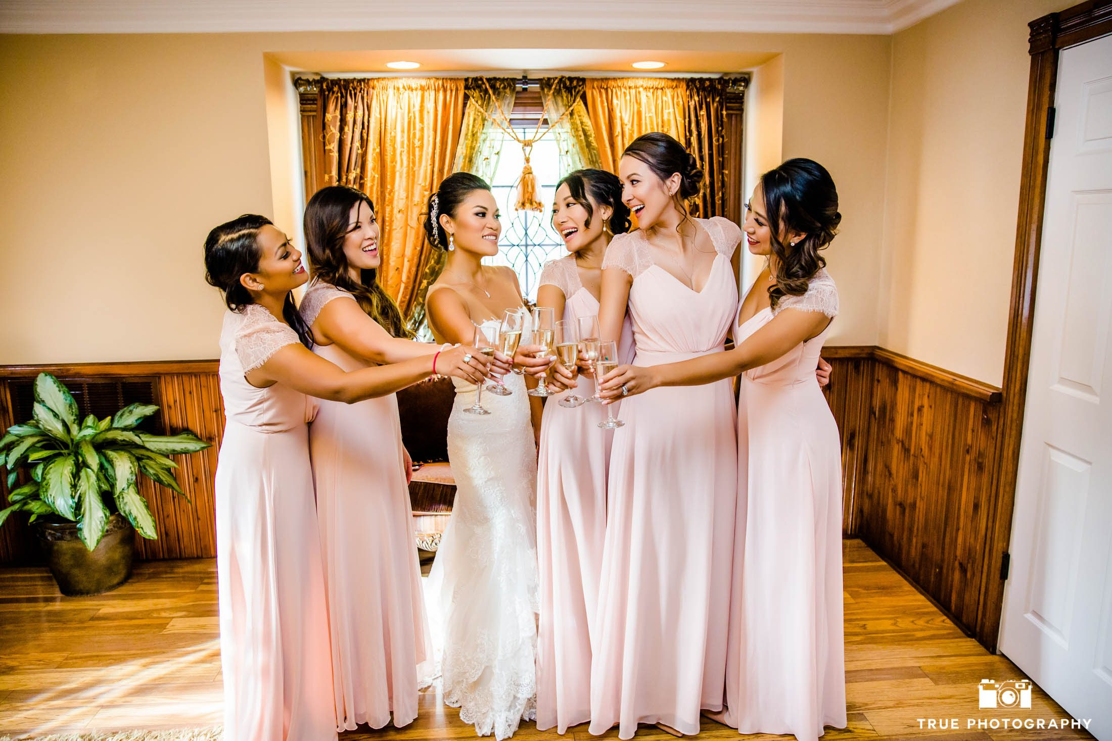 Bridemaids toast the Bride to celebrate her special day.