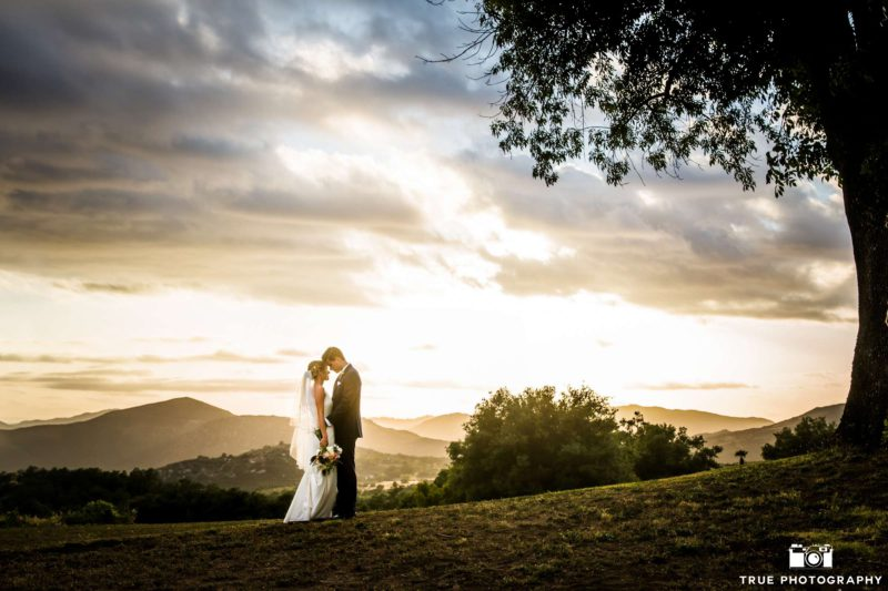 A bride and a groom take a walk among rolling hills.