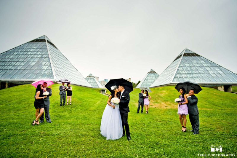A bridal party uses umbrellas for a rainy day photo in an open field.