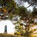 Presidio Park Engagement