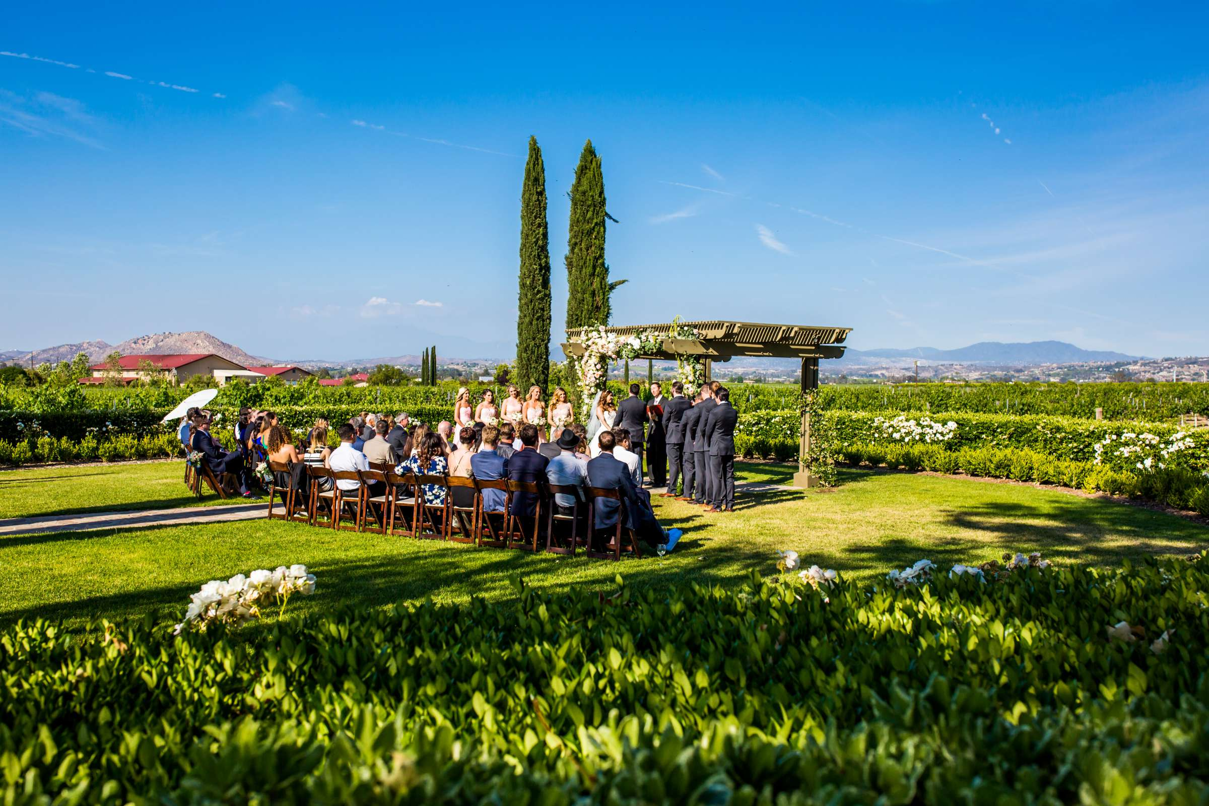 Ponte Estate Winery Wedding coordinated by Seven Stems Floral Design & Events, Jennifer and Justin Wedding Photo #72 by True Photography