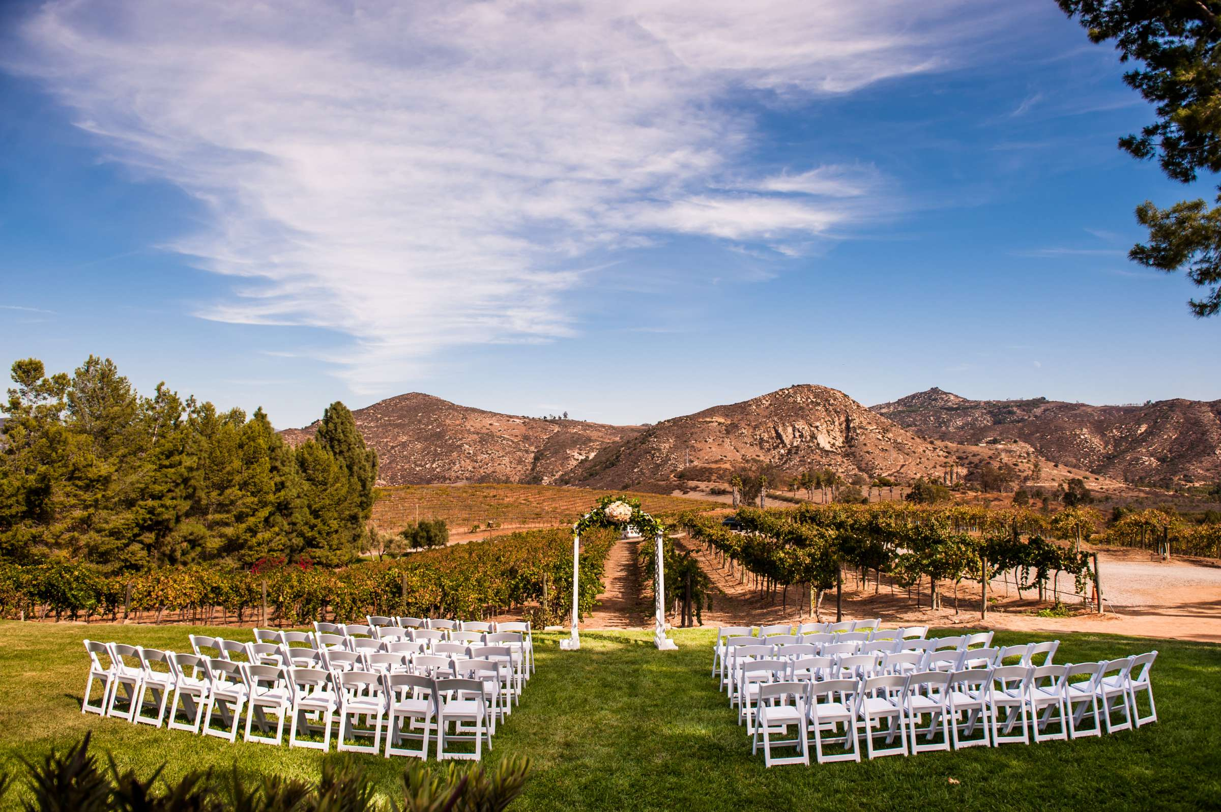 Orfila Vineyards Wedding, Tulasi and Richard Wedding Photo #15 by True Photography