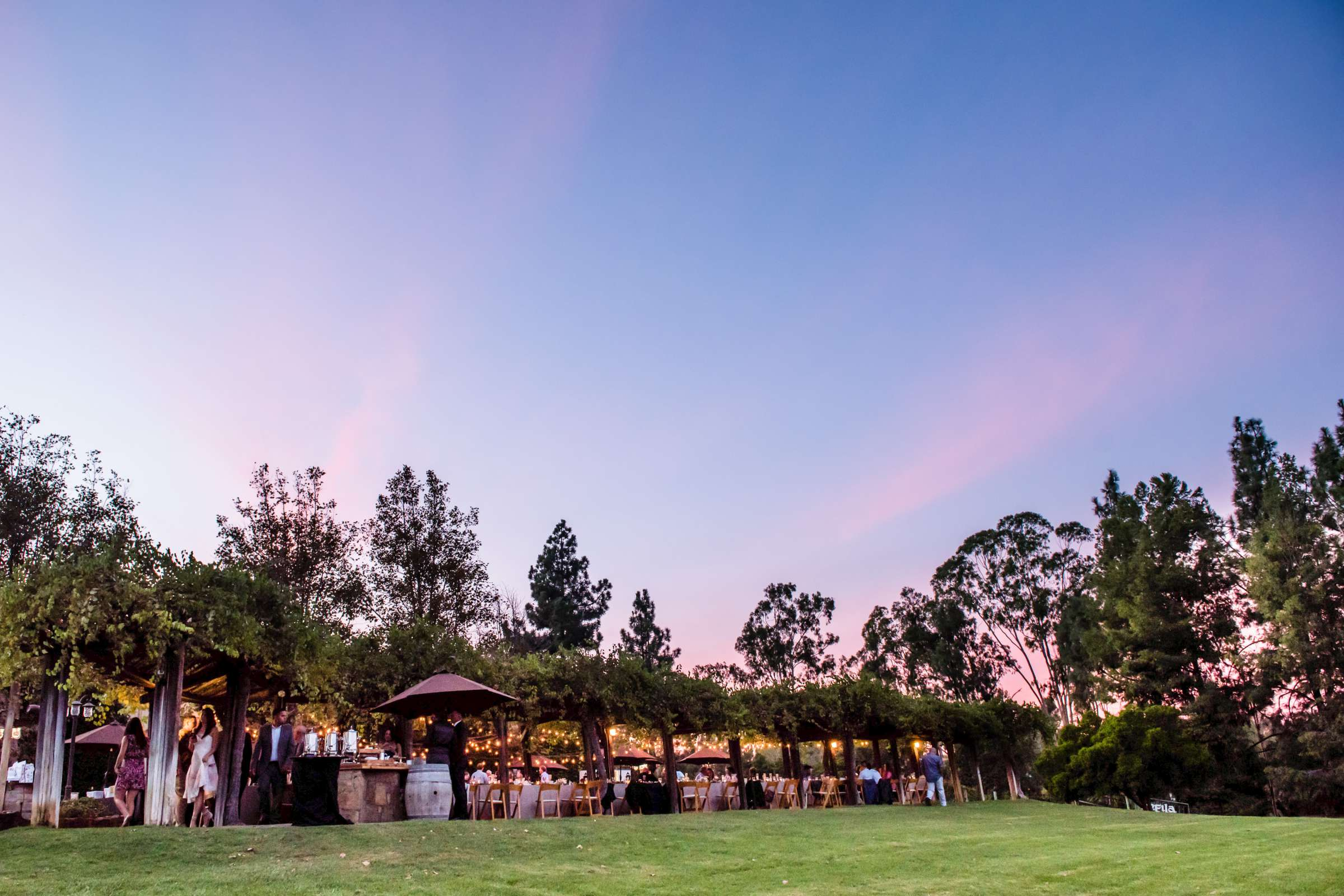 Orfila Vineyards Wedding, Tulasi and Richard Wedding Photo #69 by True Photography
