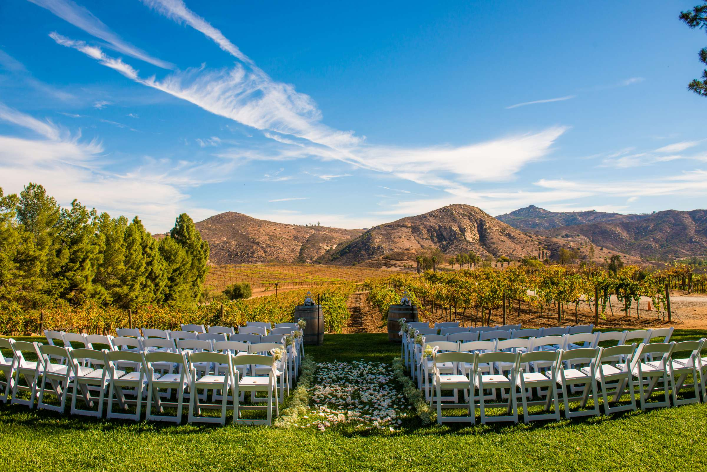Orfila Vineyards Wedding, Holly and Andrew Wedding Photo #289621 by True Photography