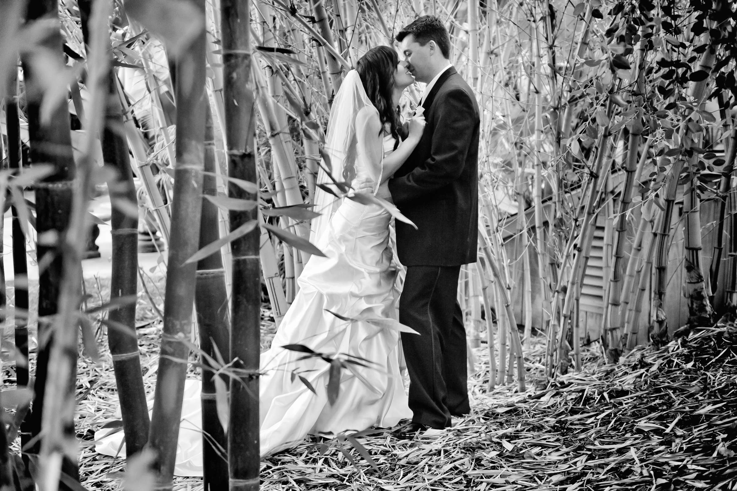 Grand Tradition Estate Wedding, Sharlene and Tony Wedding Photo #319468 by True Photography