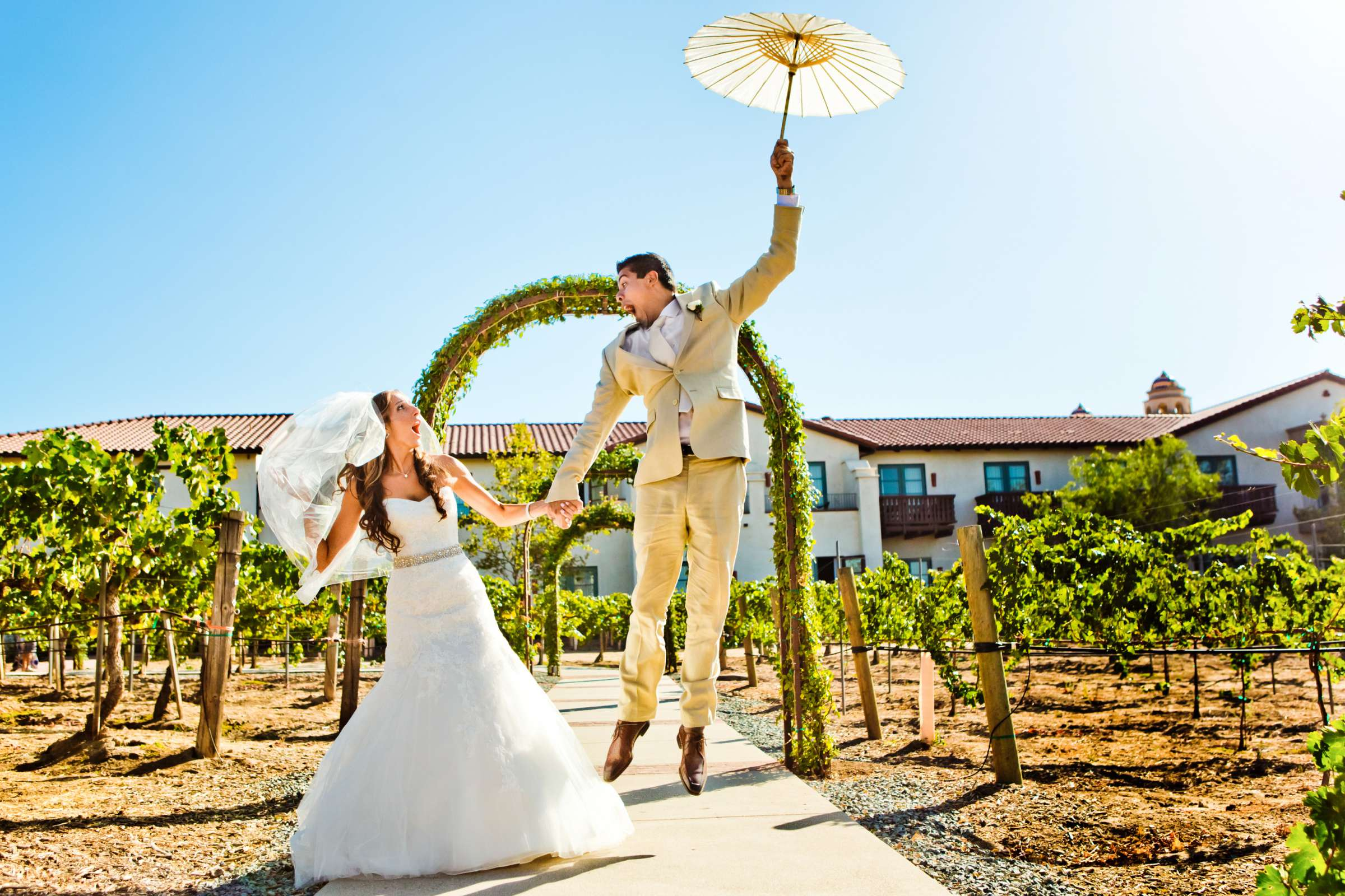 Ponte Estate Winery Wedding, Meagan and Adrian Wedding Photo #335080 by True Photography