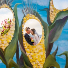 36f8198910c The Flower Fields at Carlsbad Ranch | San Diego Photographer - True ...