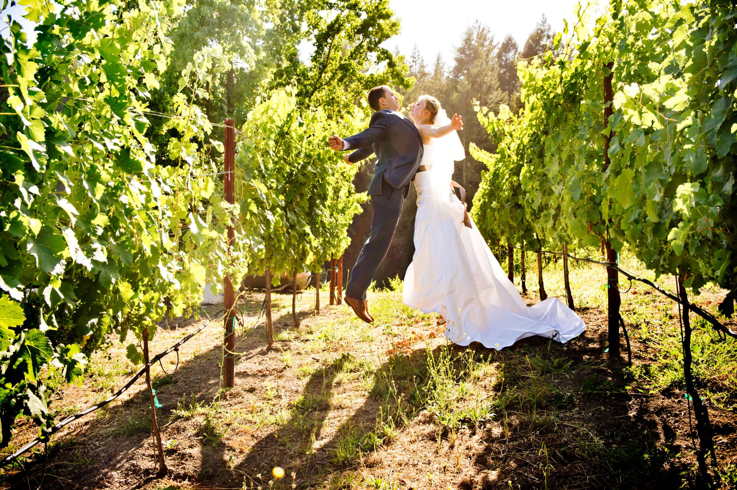 Yates Family Vineyard Wedding coordinated by Napa Valley Celebrations, Katie and Patrick Wedding Photo #356101 by True Photography