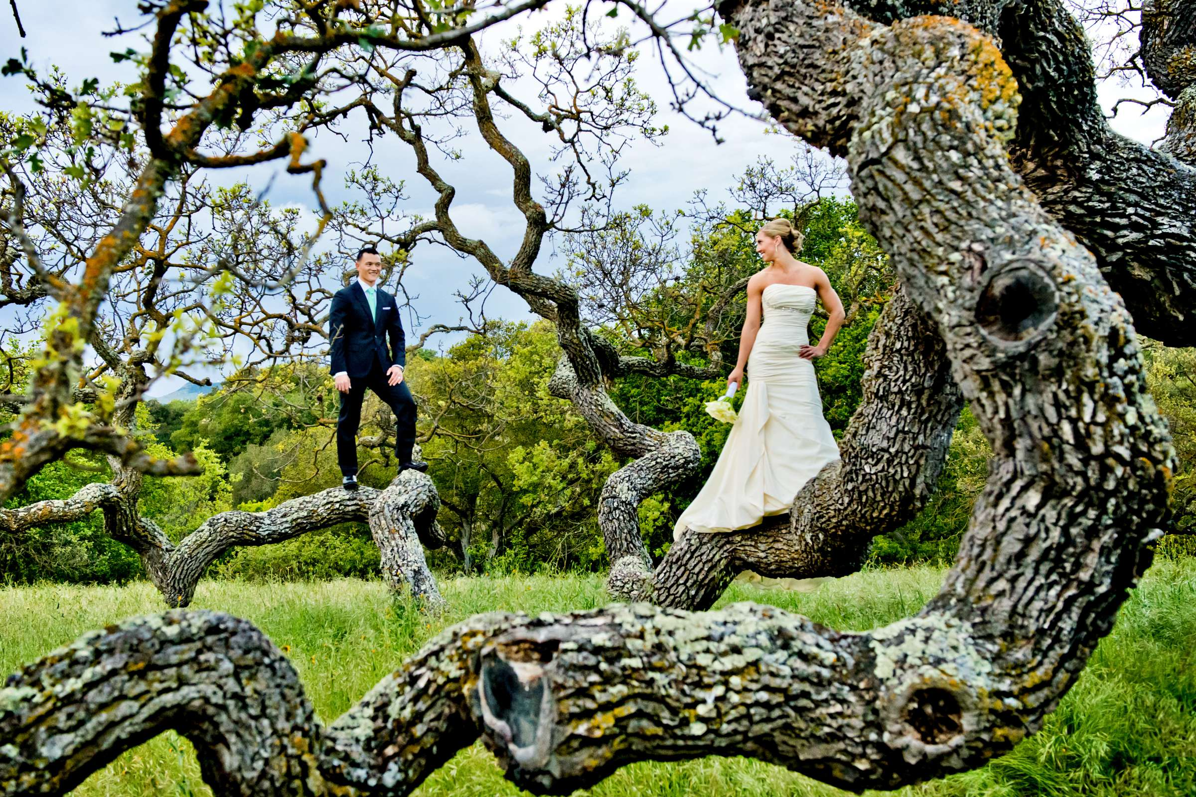 Holman Ranch Wedding, Kaley and Jason Wedding Photo #356234 by True Photography