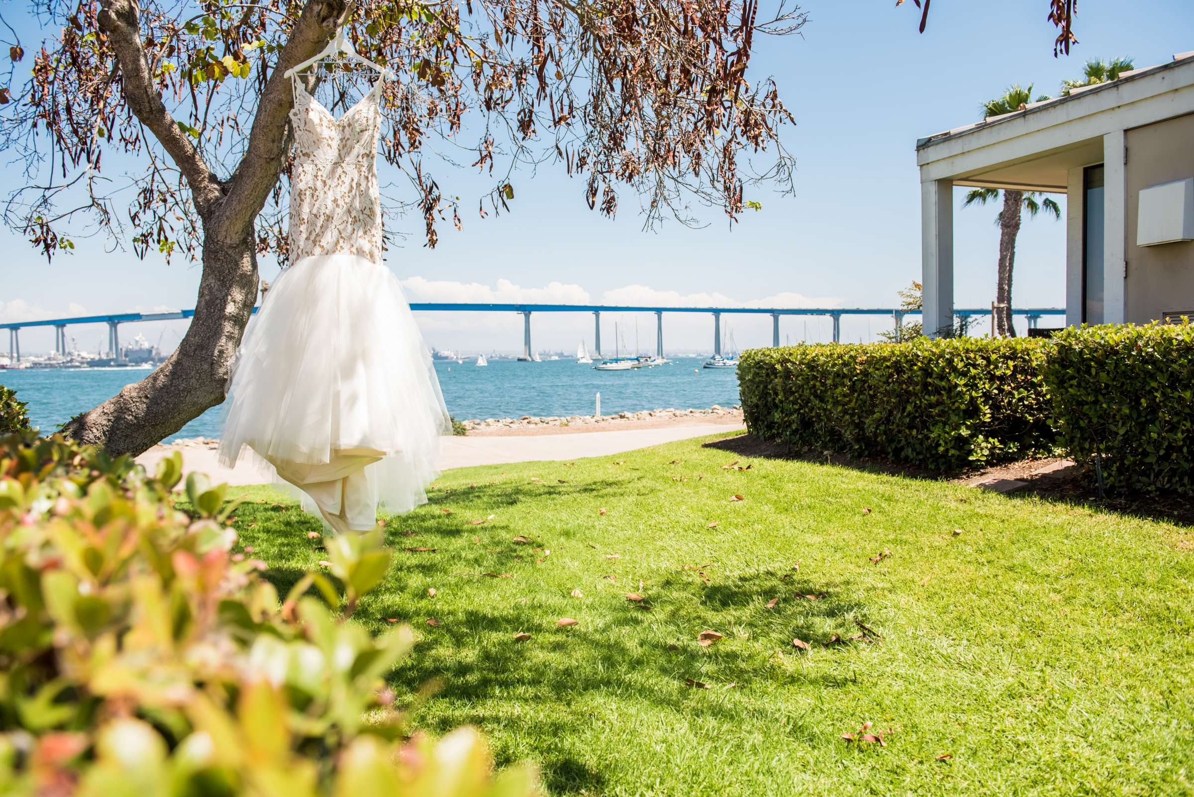 Coronado Island Marriott Resort & Spa Wedding coordinated by Bluestocking Weddings & Events, Ashleigh and Christopher Wedding Photo #157 by True Photography