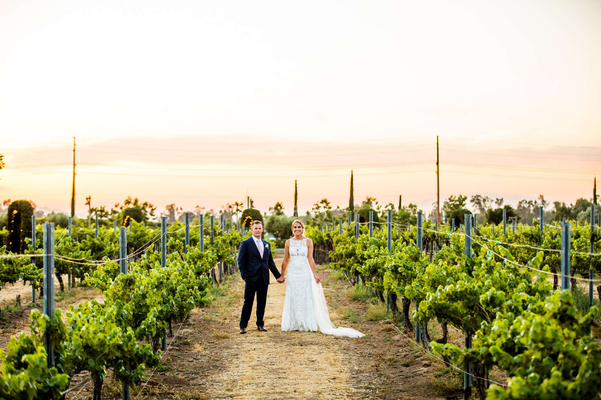 Ponte Estate Winery Wedding, Kelsey and Andrew Wedding Photo #111 by True Photography
