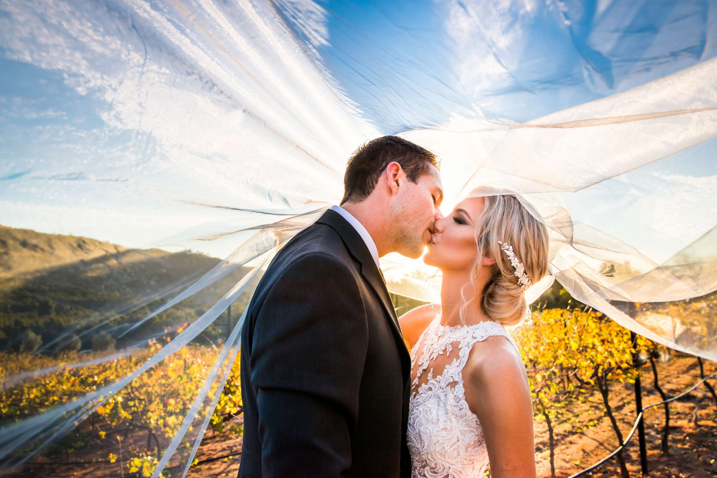 Photographers Favorite at Cordiano Winery Wedding coordinated by Sisti & Co, Sara and Kyle Wedding Photo #1 by True Photography