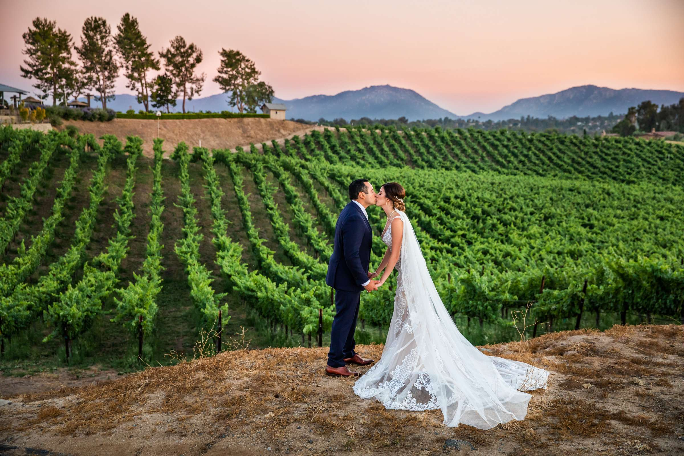 Winery at Callaway Vineyards & Winery Wedding coordinated by Michelle Garibay Events, Chelsea and Luis carlos Wedding Photo #1 by True Photography