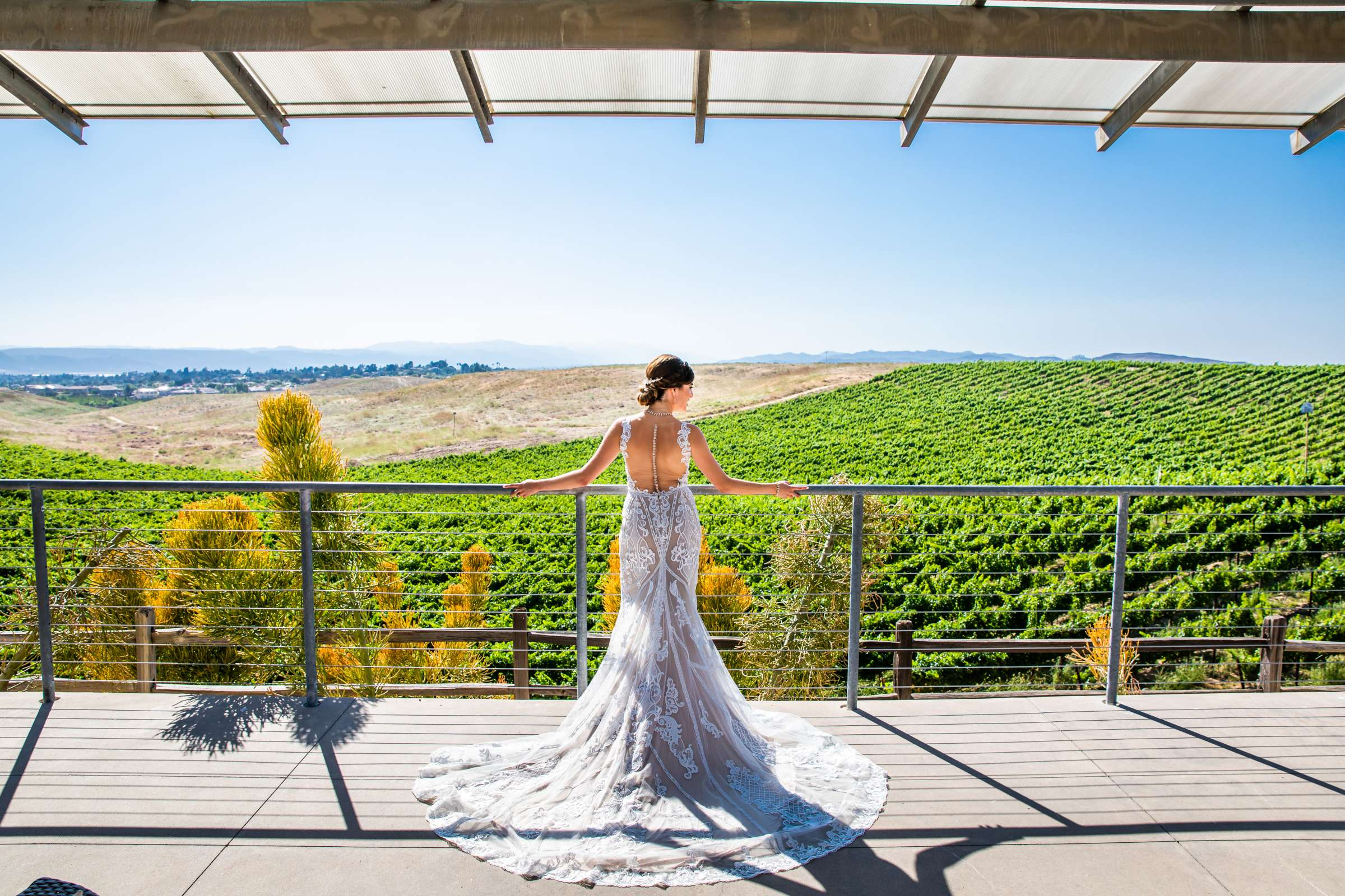 Winery at Callaway Vineyards & Winery Wedding coordinated by Michelle Garibay Events, Chelsea and Luis carlos Wedding Photo #12 by True Photography